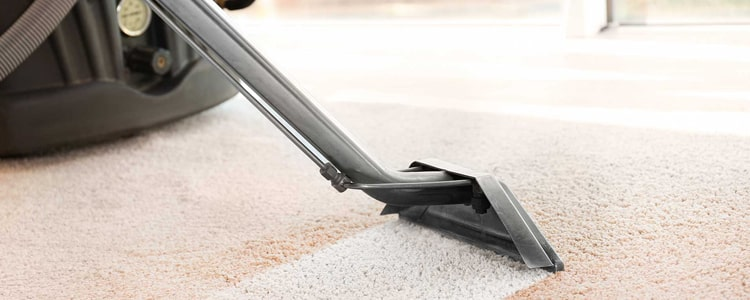 Expert Carpet Cleaning Services